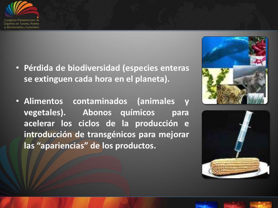 Pérdida de biodiversidad (especies enteras se extinguen cada hora en el planeta).
