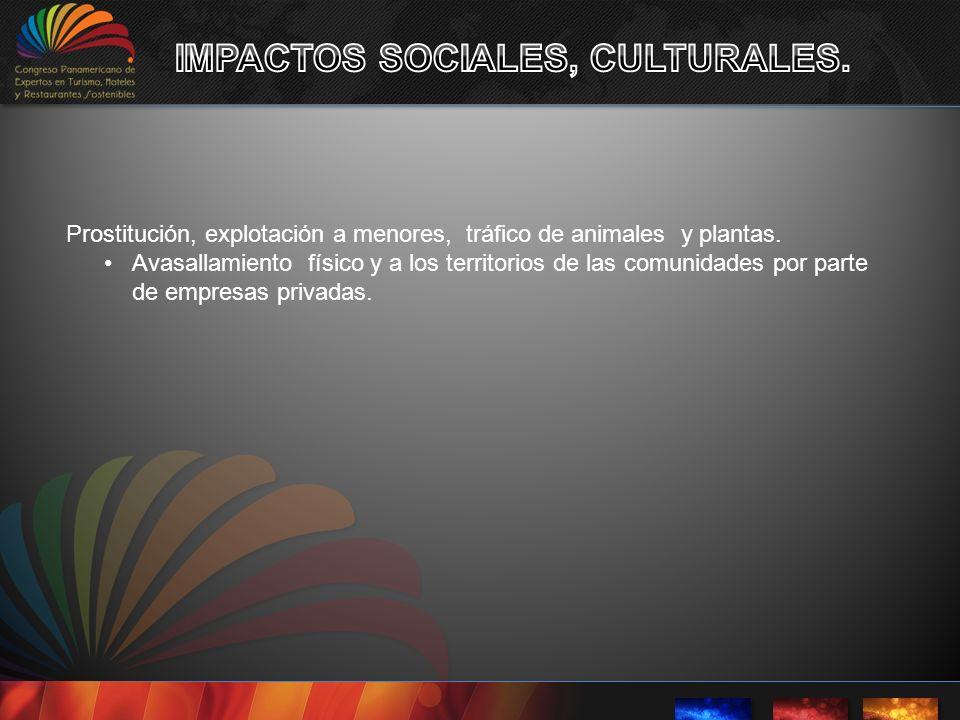 IMPACTOS SOCIALES, CULTURALES.