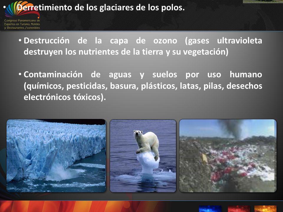 Derretimiento de los glaciares de los polos.