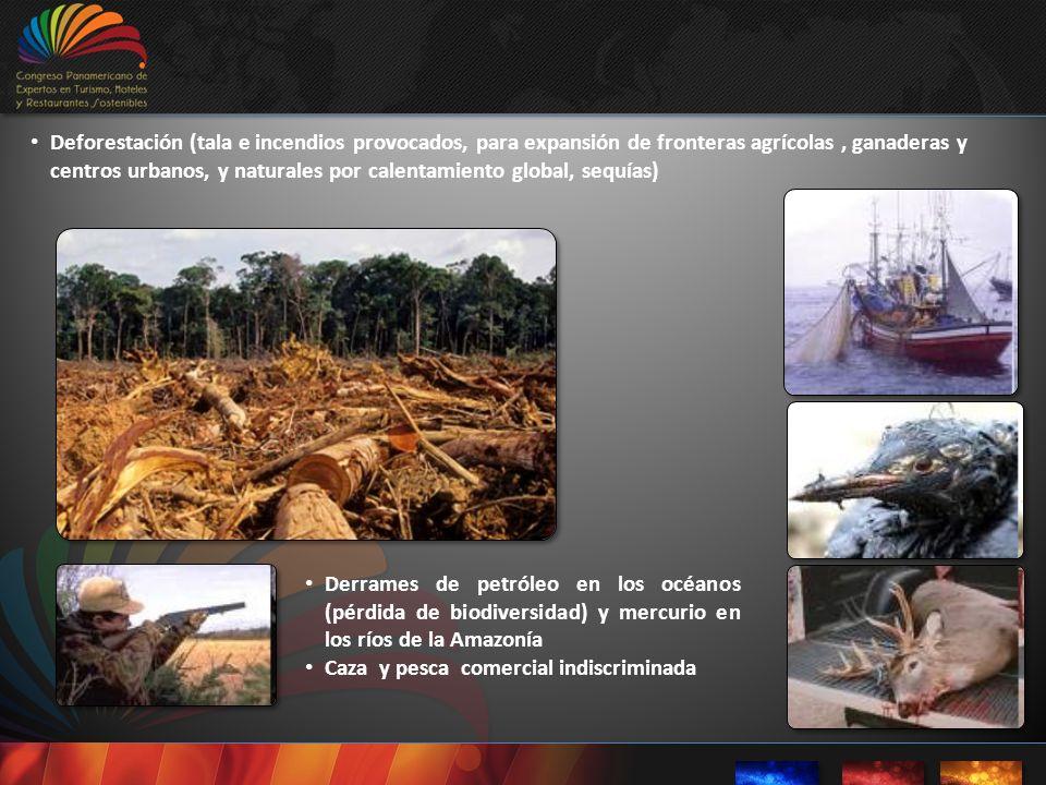 Deforestación (tala e incendios provocados, para expansión de fronteras agrícolas , ganaderas y centros urbanos, y naturales por calentamiento global, sequías)