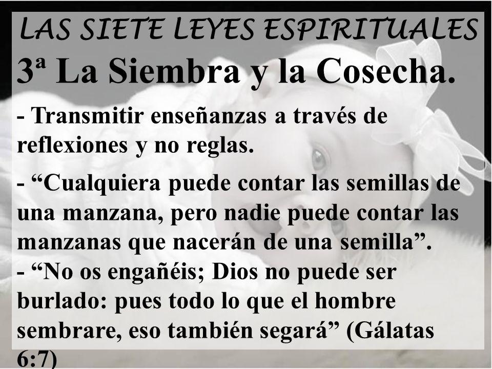 3ª La Siembra y la Cosecha.
