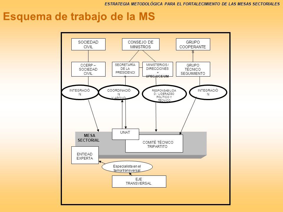 Esquema de trabajo de la MS