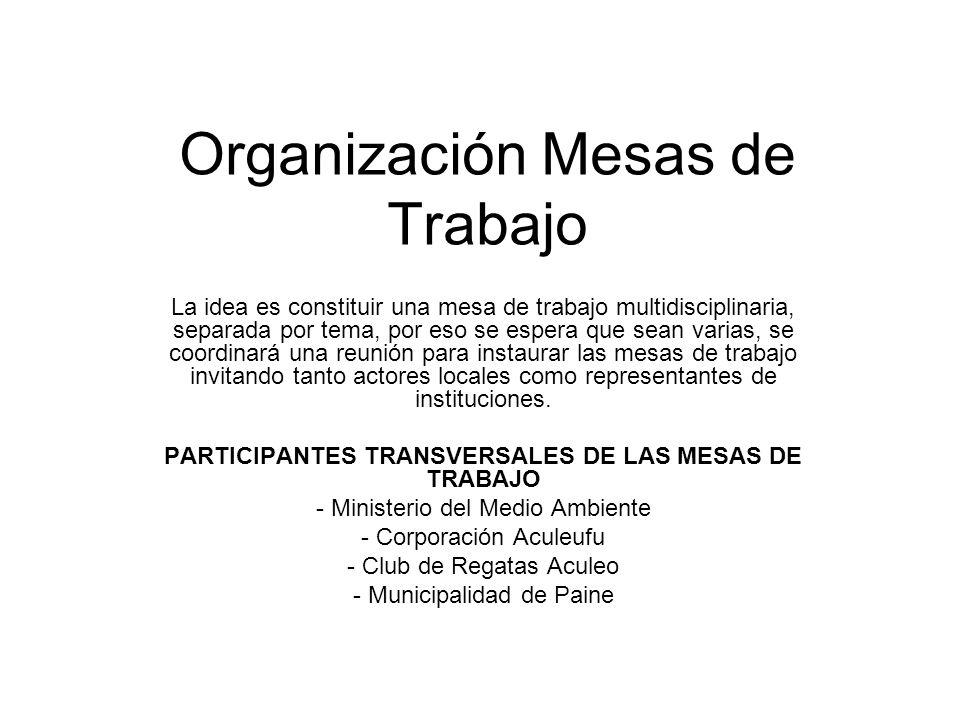 Organización Mesas de Trabajo