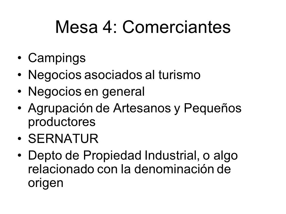 Mesa 4: Comerciantes Campings Negocios asociados al turismo