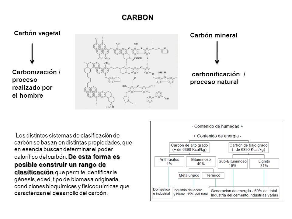 CARBON Carbón vegetal Carbón mineral Carbonización / carbonificación /