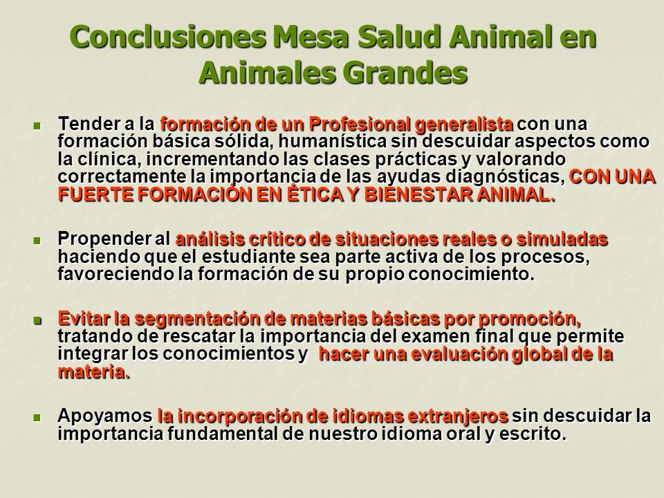 Conclusiones Mesa Salud Animal en Animales Grandes