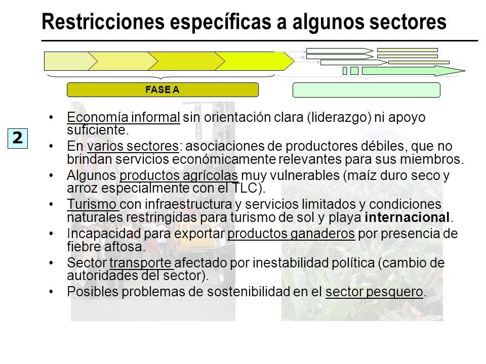 Restricciones específicas a algunos sectores