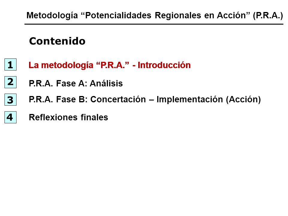 Metodología Potencialidades Regionales en Acción (P.R.A.)