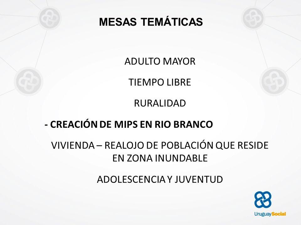 - CREACIÓN DE MIPS EN RIO BRANCO