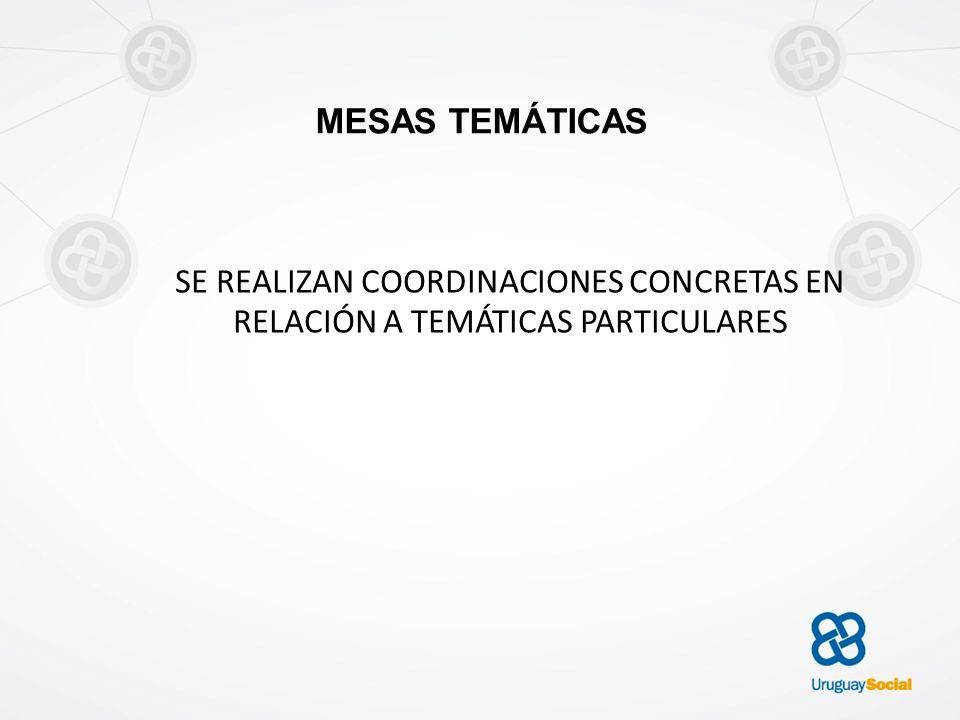 MESAS TEMÁTICAS SE REALIZAN COORDINACIONES CONCRETAS EN RELACIÓN A TEMÁTICAS PARTICULARES