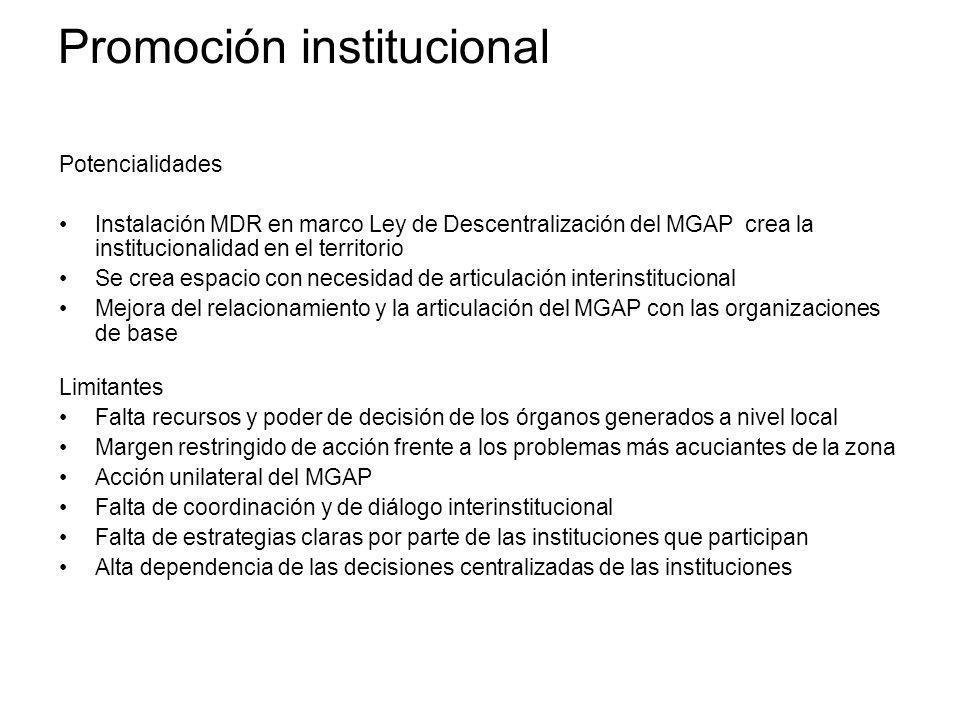 Promoción institucional