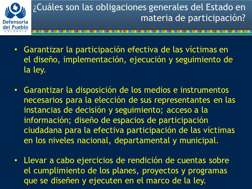 ¿Cuáles son las obligaciones generales del Estado en materia de participación