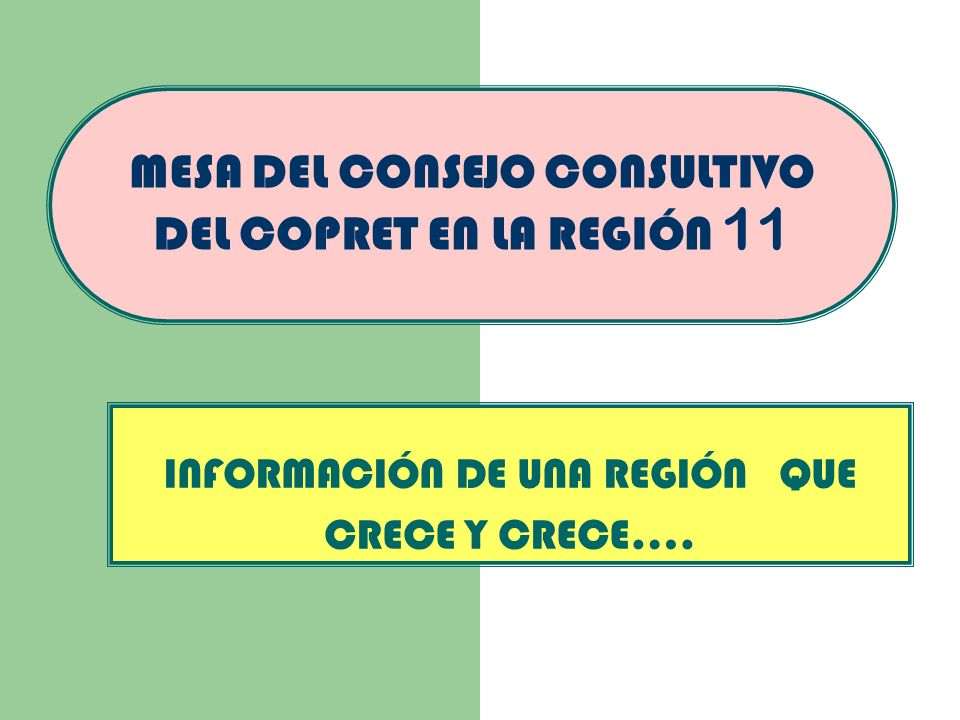 MESA DEL CONSEJO CONSULTIVO DEL COPRET EN LA REGIÓN 11