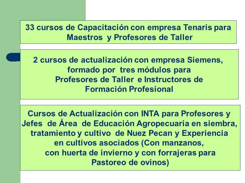 33 cursos de Capacitación con empresa Tenaris para