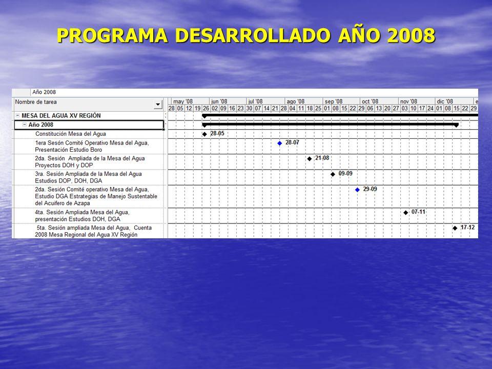 PROGRAMA DESARROLLADO AÑO 2008