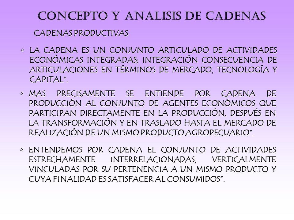 CONCEPTO Y ANALISIS DE CADENAS