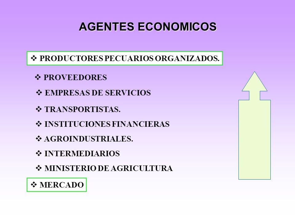 AGENTES ECONOMICOS PRODUCTORES PECUARIOS ORGANIZADOS. PROVEEDORES