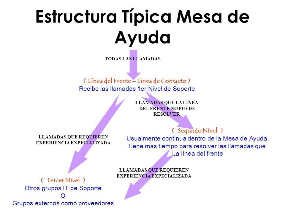 Estructura Típica Mesa de Ayuda