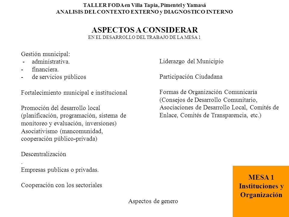 ASPECTOS A CONSIDERAR MESA 1 Instituciones y Organización