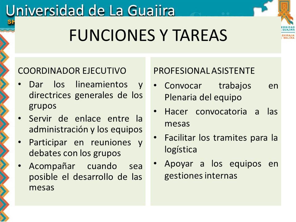 FUNCIONES Y TAREAS COORDINADOR EJECUTIVO PROFESIONAL ASISTENTE