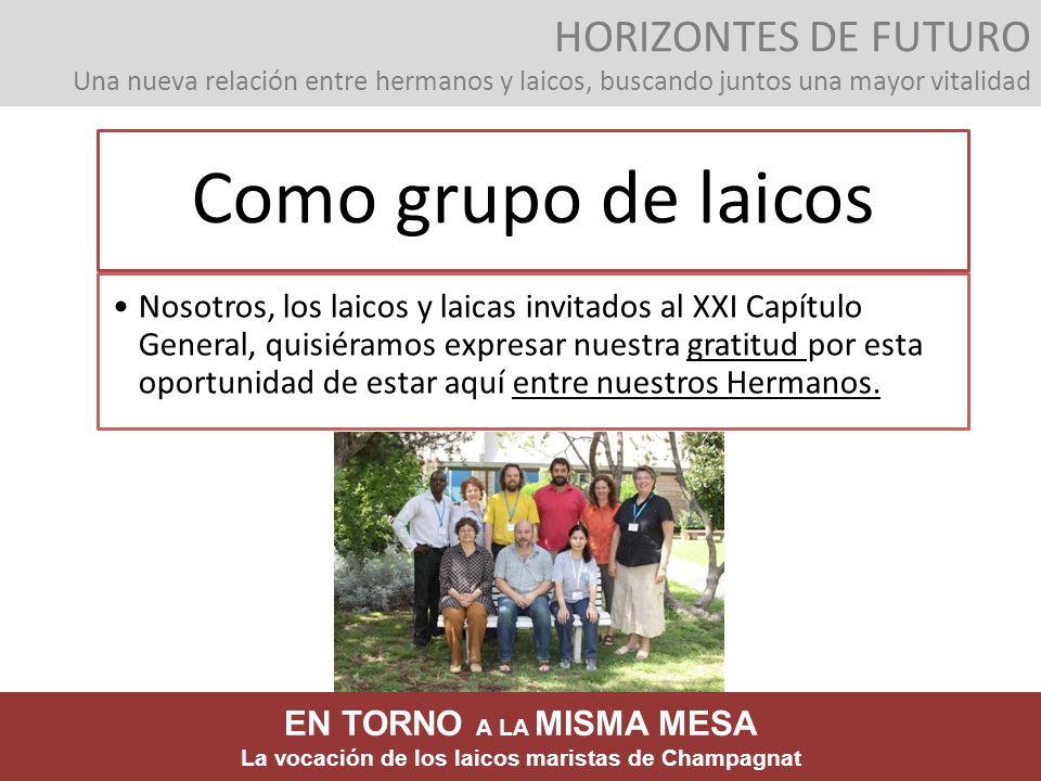HORIZONTES DE FUTURO Una nueva relación entre hermanos y laicos, buscando juntos una mayor vitalidad