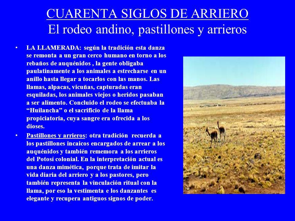 CUARENTA SIGLOS DE ARRIERO El rodeo andino, pastillones y arrieros