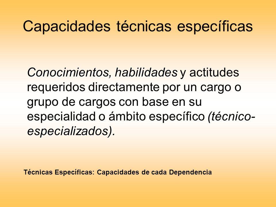 Capacidades técnicas específicas