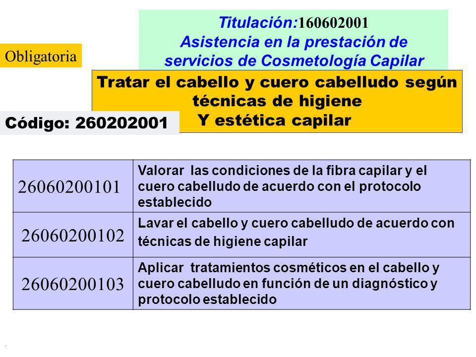 Asistencia en la prestación de servicios de Cosmetología Capilar