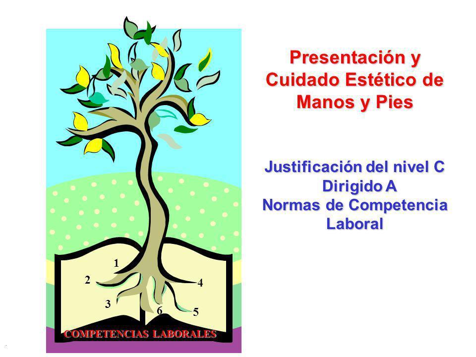 Presentación y Cuidado Estético de Manos y Pies