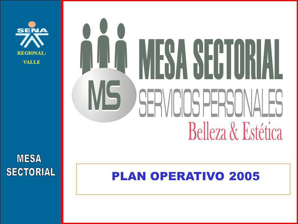 MESA SECTORIAL REGIONAL: VALLE PLAN OPERATIVO 2005