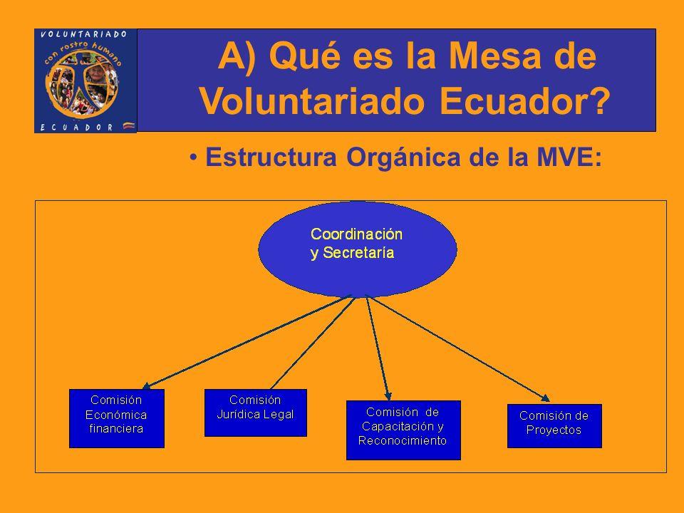 Estructura Orgánica de la MVE: