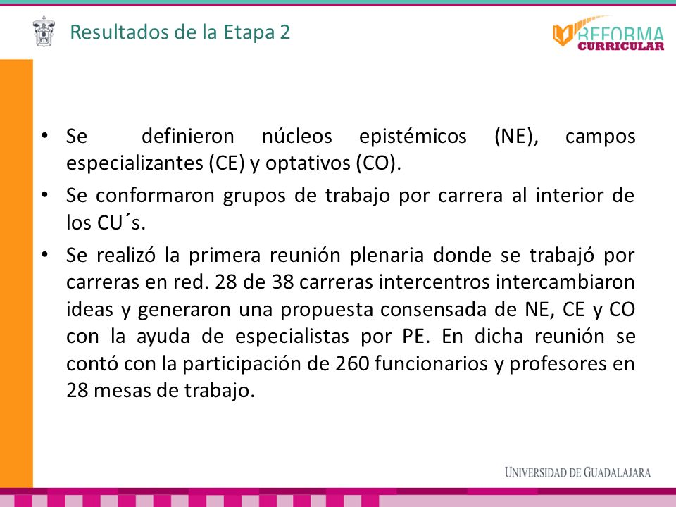 Resultados de la Etapa 2 Se definieron núcleos epistémicos (NE), campos especializantes (CE) y optativos (CO).