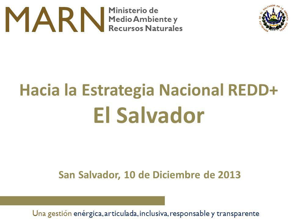 San Salvador, 10 de Diciembre de 2013