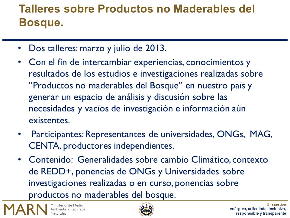 Talleres sobre Productos no Maderables del Bosque.