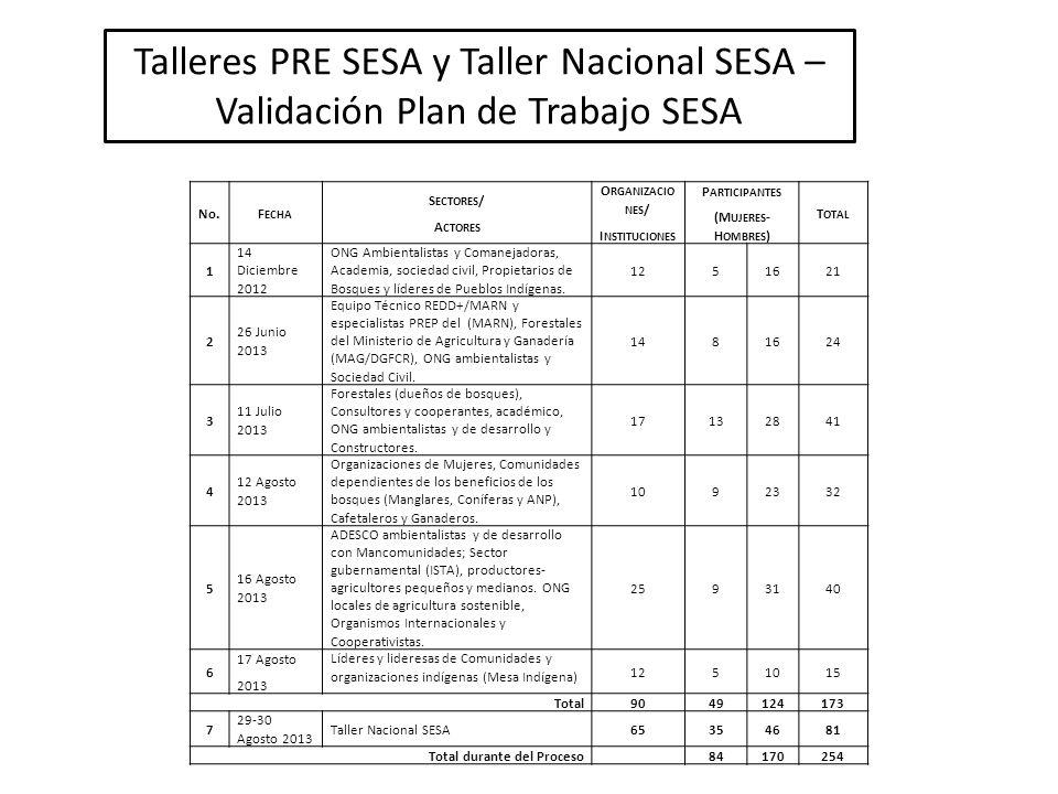Talleres PRE SESA y Taller Nacional SESA – Validación Plan de Trabajo SESA