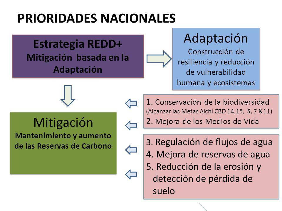 Mitigación basada en la Adaptación