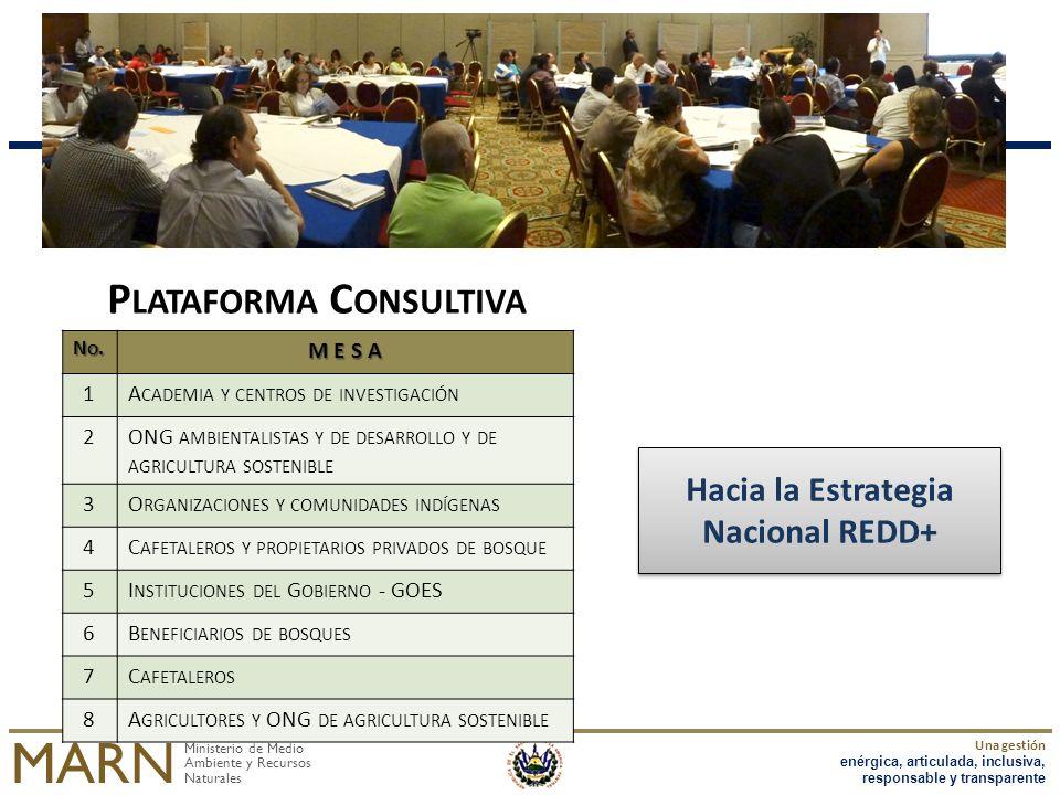 Plataforma Consultiva Hacia la Estrategia Nacional REDD+