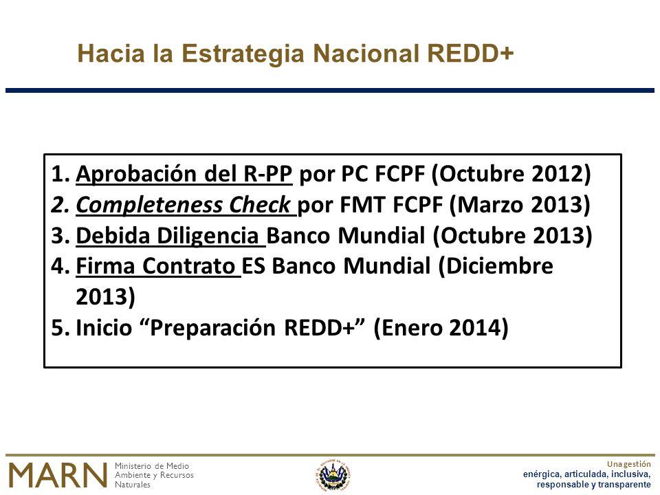 Hacia la Estrategia Nacional REDD+