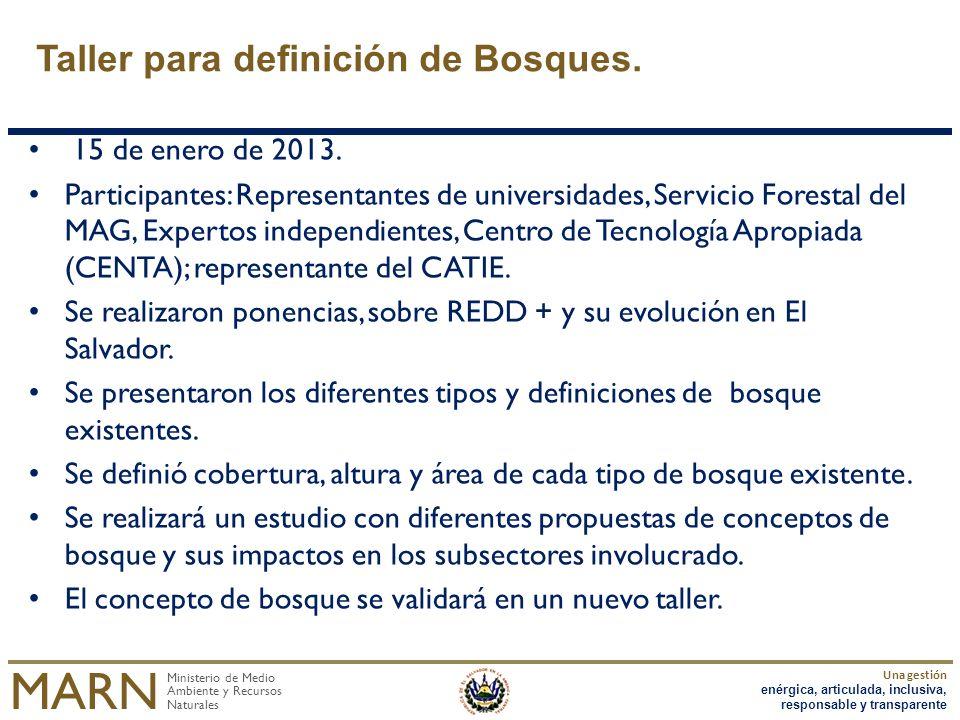 Taller para definición de Bosques.