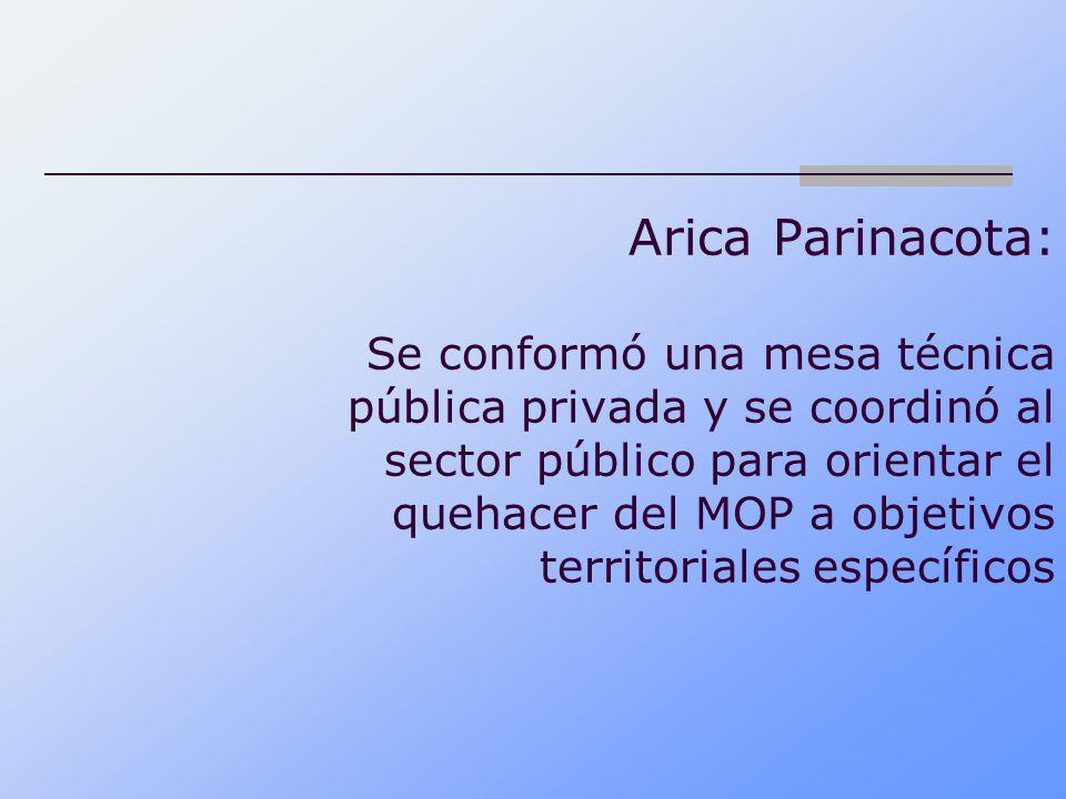 Arica Parinacota: Se conformó una mesa técnica pública privada y se coordinó al sector público para orientar el quehacer del MOP a objetivos territoriales específicos