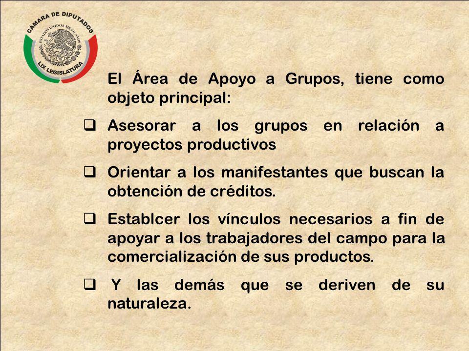 El Área de Apoyo a Grupos, tiene como objeto principal: