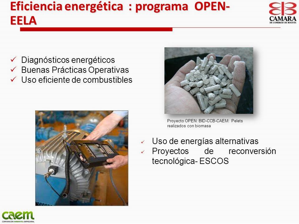 Eficiencia energética : programa OPEN-EELA