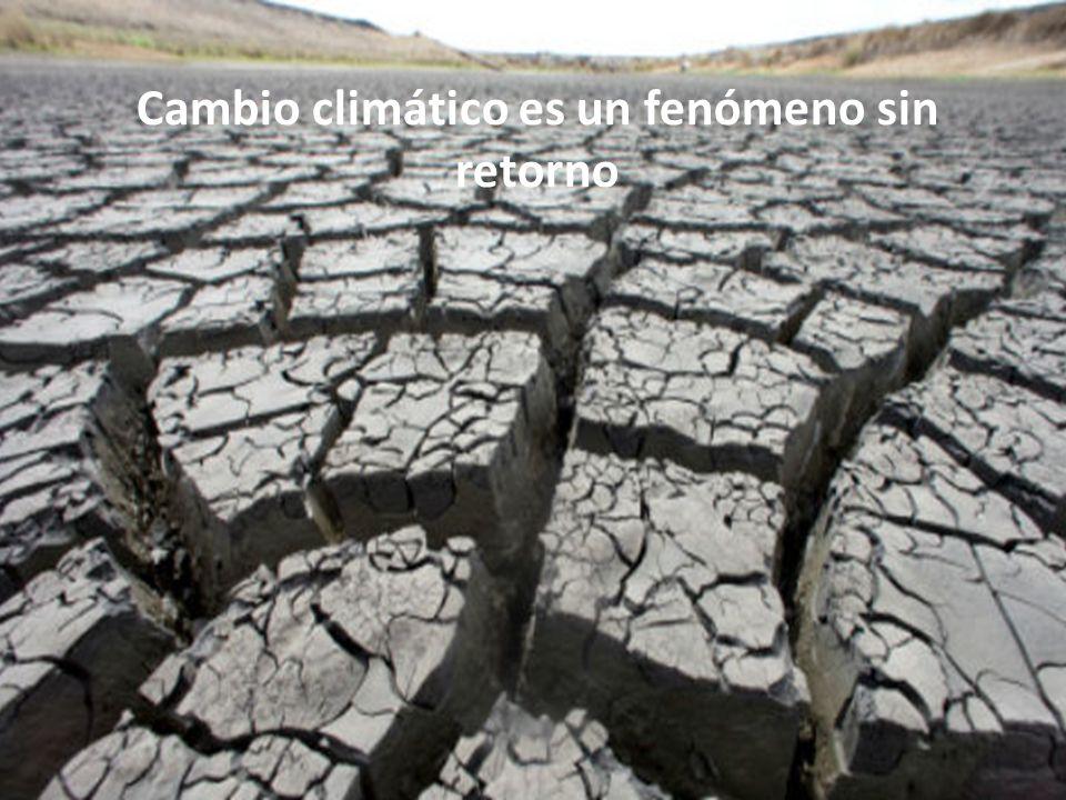 Cambio climático es un fenómeno sin retorno
