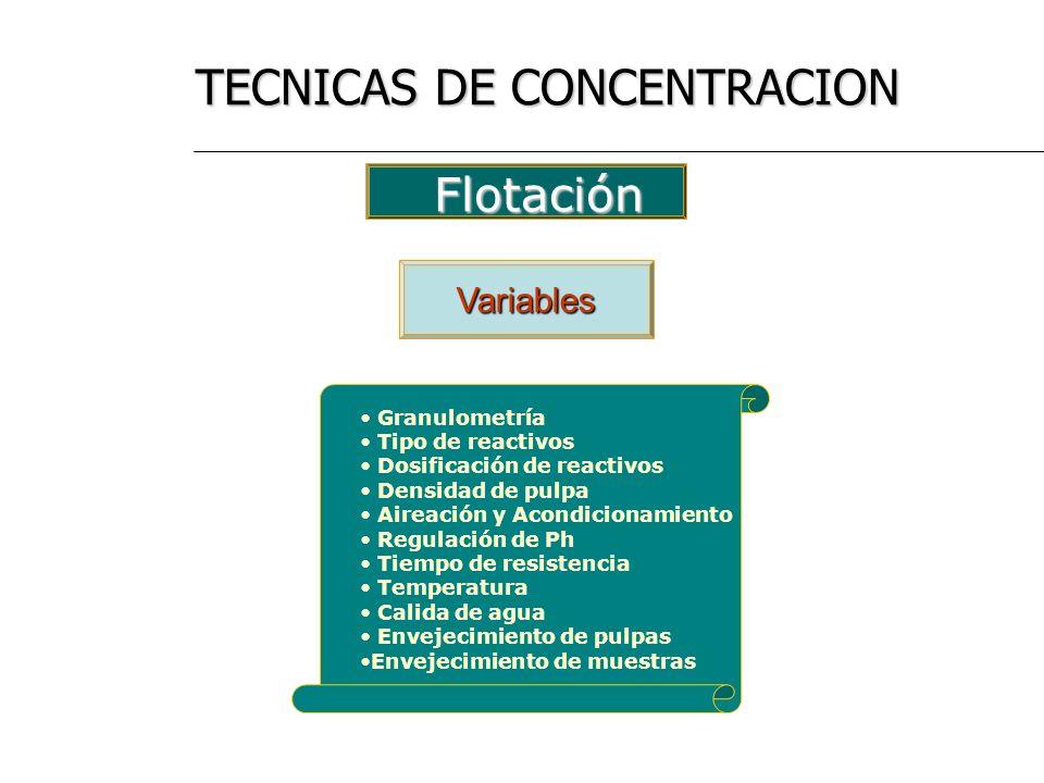 TECNICAS DE CONCENTRACION
