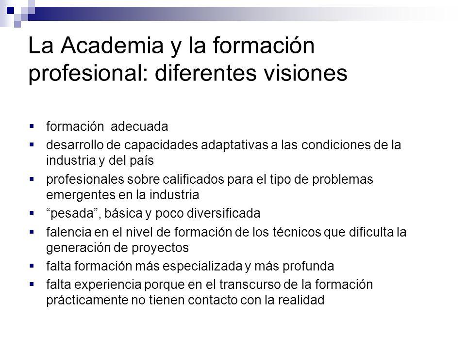 La Academia y la formación profesional: diferentes visiones