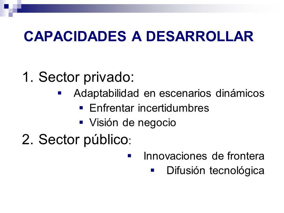 CAPACIDADES A DESARROLLAR