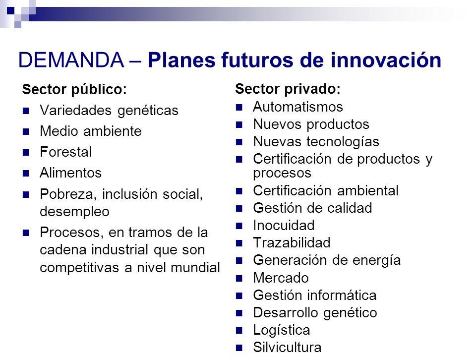 DEMANDA – Planes futuros de innovación