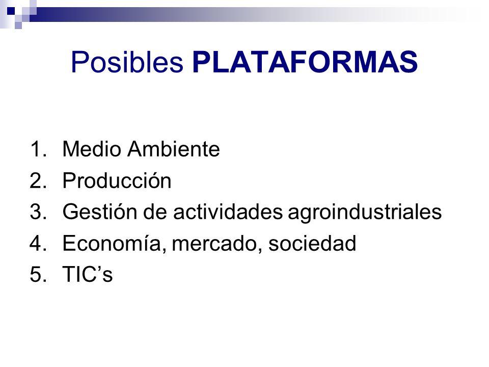 Posibles PLATAFORMAS Medio Ambiente Producción