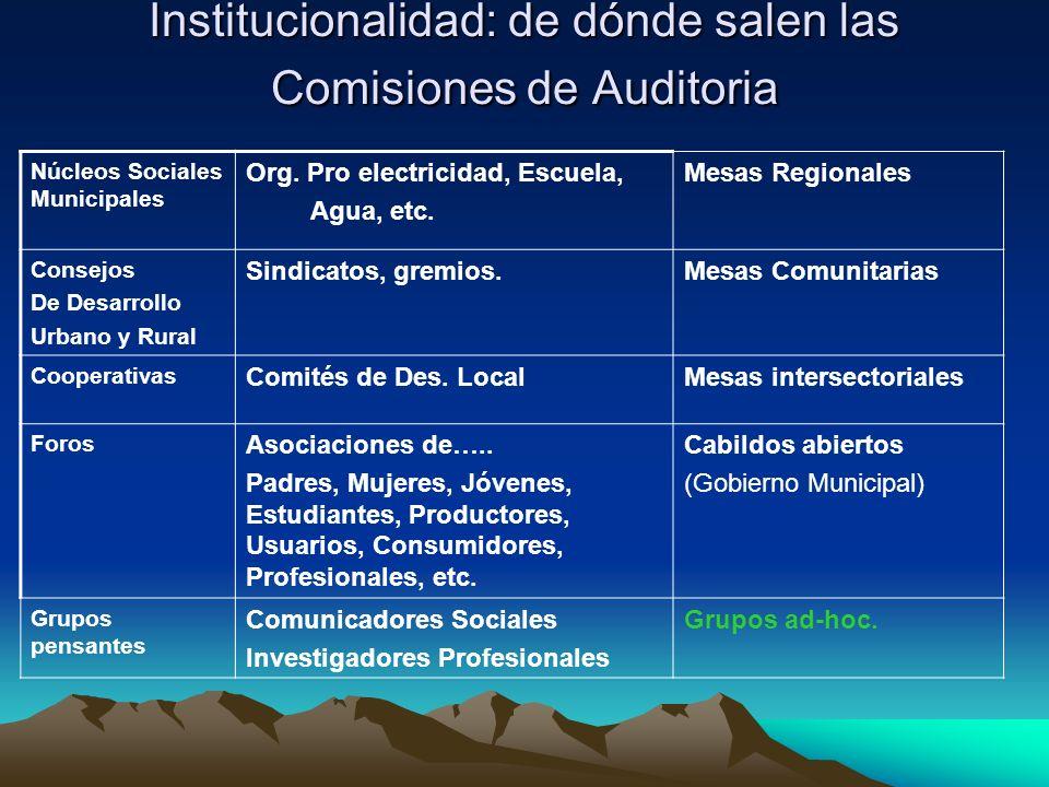 Institucionalidad: de dónde salen las Comisiones de Auditoria