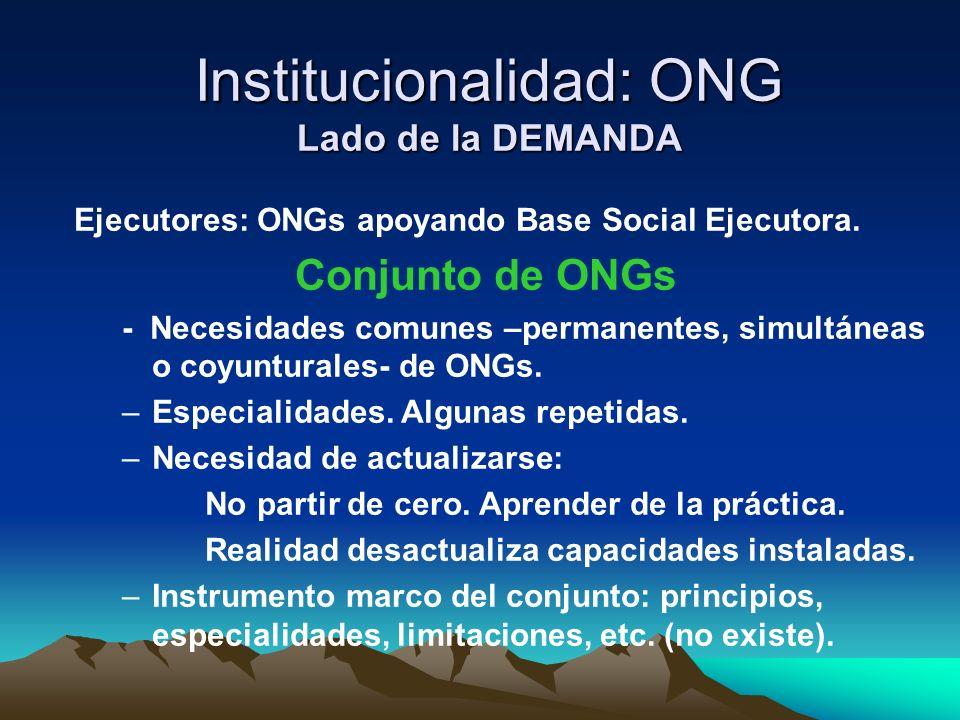Institucionalidad: ONG Lado de la DEMANDA